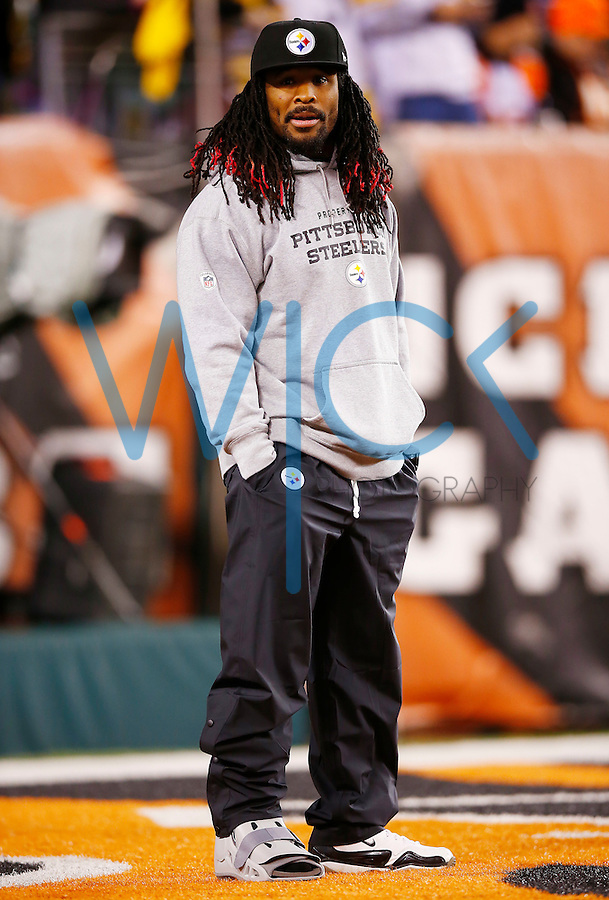 DeAngelo Williams #34 of the Pittsburgh Steelers looks on during warm ups while wearing a boot prior to the Wild Card playoff game against the Cincinnati Bengals at Paul Brown Stadium on January 9, 2016 in Cincinnati, Ohio. (Photo by Jared Wickerham/DKPittsburghSports)