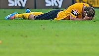 Fussball, 2. Bundesliga, Saison 2013/14, 34. Spieltag, Armina Bielefeld, Sonntag (11.05.14), Dresden, Gluecksgas Stadion. Dresdens Robert Koch nach dem Abstieg.