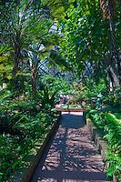 Botanical, Gardens,  Balboa Park, San Diego, Ca