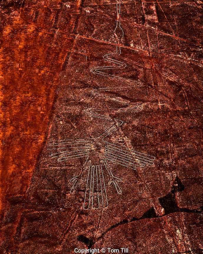 The Crane  Nazca Lines. Peru  World's greatest geolgyphs   Nazca Plain   Nazca LInes National Acheological Park   UNESCO World Heritage Site