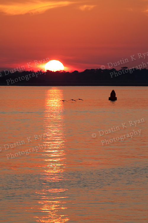 Charleston South Carolina Lowcountry Sunset on the Battery pelicans flying sun
