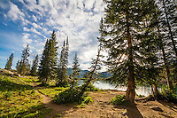A warm Summer morning looking through the trees at Cecret Lake in Utah's Wasatch Mountains.