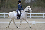 Class 1. Intro A. Unaffiliated dressage. Brook Farm Training Centre. Essex. 19/03/2017. MANDATORY Credit Garry Bowden/Sportinpictures - NO UNAUTHORISED USE - 07837 394578