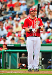 24 May 2009: Washington Nationals' first baseman Adam Dunn at bat against the Baltimore Orioles at Nationals Park in Washington, DC. Dunn hit two home runs for the day including a Grand Slam as the Nationals rallied to defeat the Orioles 8-5 and salvage one win of their interleague series. Mandatory Credit: Ed Wolfstein Photo