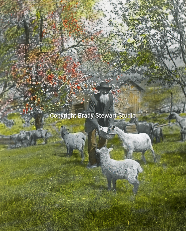 Jerome ID: A Sheep Herder feeding the flock - 1910.   Brady Stewart and three friends went to Idaho on a lark from 1909 thru early 1912.  As part of the Mondell Homestead Act, they received a grant of 160 acres north of the Snake River.  Brady Stewart photographed the adventures of farming along with the spectacular landscapes. To give family and friends a better feel for the adventure, he hand-color black and white negatives into full-color 3x4 lantern slides.  The Process:  He contacted a negative with another negative to create a positive slide.  He then selected a fine brush and colors and meticulously created full color slides.