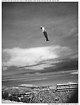 "With sun bouncing off the clouds in Park City, Utah, an Aerial Skier takes flight off the jump in front of 14000 spectators at the 2002 Olympic Winter Games...©2002 David Burnett/Contact -SLOC ""The Fire Within"""