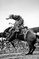 A cowboy realizes his ride is about to end.<br />