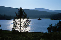 &quot;Prosser Reservoir&quot;- Photographed in the late afternoon from the east shore of Prosser Reservoir, CA, facing west.<br />
