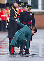 Kate's incident at St. Patrick's Day Parade - UK