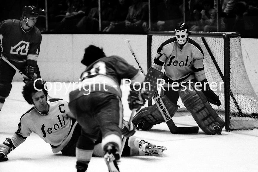 Seals vs Atlanta Flames, Seals Dave Hrechkosy blocks shot by Flames #20, goalie Gilles Meloche.<br />(1973 photo/Ron Riesterer)