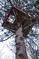 Zip Line Platform at Canopy Tours NW, Camano Island, Washington, US