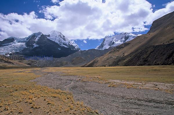 .Alpine tundra, Andes Mountains, 15,000 feet, Peru....