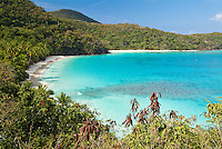 View of Gibney / Oppenheimer Beach.Virgin Islands National Park.St. John, U.S. Virgin Islands
