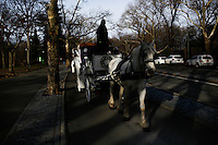 A horse-drawn cab rides through Central Park, New York, 01/20/2016 NYC Mayor Bill de Blasio plans to reduce the number of carriages and restrict them to ride in Central Park. Photo by VIEWpress