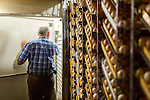 July 24, 2015. Candor, North Carolina.<br />  Hatchery manager Joe Steed, who has worked fro Purdue for 29 years, walks out of one of the egg setters. Each setter holds around 87,000 eggs, ranging from 0 days old, to 18.5 days old<br />  Chicken producer Perdue Farms Inc. has become the first major poultry company to attempt to raise more than half of its flock with no antibiotics, human or for animals only. As demand for meats free of medicines has risen, Perdue has upgraded their facilities to increase cleanliness and sterility to allow the company to cut antibiotics out of the chicken hatching process.