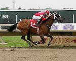 Parx Racing Win Photos_08-2014