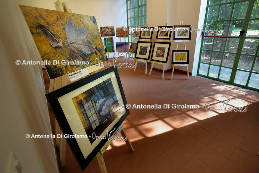 Mostra fotografica del corso di fotografia.Exibition of Course of photography. Docente Gabriel Rifilato.Upter. L' Università popolare di Roma si occupa dell' apprendimento permanente degli adulti.Popular University of Rome is responsible for Life Long Learning.