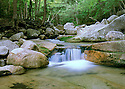 A small cascade fills a shallow pool with crystal clear water near Sabbaday Falls, NH.