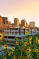A  riverboat docked along the shore of the Mississippi River in St. Paul, Minnesota with wildflowers growing along the shoreline at sunrise.