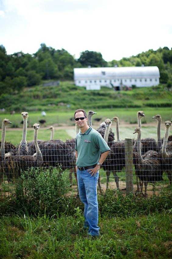 LAFAYETTE, NJ - JULY 23, 2013: Lance Appelbaum of Fossil Farms with Ostriches he sells from Roaming Acres Farm. CREDIT: Clay Williams for Edible Jersey.<br /> <br /> <br /> &copy; Clay Williams / http://claywilliamsphoto.com