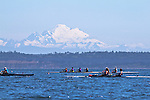 Open Water Racing: 2014 Rat Island