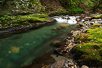 The Yokokawa River, in Nagano, Japan, flows green through green mossy banks.