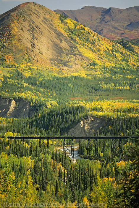 Alaska railroad train trestle tracks over Riley Creek, Denali National Park, Alaska