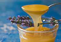 Europe/France/Provence-Alpes-Cote d'Azur/04/ Alpes de Haute-Provence/Valensole: Miel de Lavande du Plateau de Valensole - Stylisme : Valérie LHOMME //   France, Alpes de Haute Provence, Verdon Regional Natural Park,   lavender honey jar from the Valensole plateau
