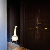 A stuffed figure of a swan stands guard at the entrance to an apartment
