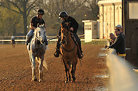 Trainer Mike Maker and co-owner Harvey Diamond watch their Derby hopeful Hansen being led off Churchill Downs Trackside training track, after a four furlong breeze, with Joel Barrientos in the irons, on Sunday March 18, 2012 in Louisville, Kentucky.
