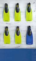 A row of acid yellow flippers have been hung on the wall  as a quirky artwork