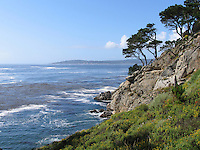 Point Lobos State Reserve,  Big Sur Area, California, USA