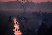 Camel Mela (Festival) outside Harappa town.  People bring their camels to this saints tomb because he was good at healing camels. 4,800 years ago, at the same time as the early civilizations of Mesopotamia and Egypt, great cities arose along the flood plains of the Indus and Saraswati (Ghaggar-Hakra) rivers.  Developments at Harappa have pushed the dates back 200 years for this civilization, proving once and for all, that this civilization was not just an offshoot of Mesopotamia..They were a highly organized and very successful civilization.  They built some of the world's first planned cities, created one of the world's first written languages and thrived in an area twice as large as Egypt or Mesopotamia for 900 years (1500 settlements spread over 280,000 square miles on the subcontinent)..There are three major communities--Harappa, Mohenjo Daro, and Dholavira. The town of Harappa flourished during this period because of it's location at the convergence of several trade routes that spanned a 1040 KM swath from the northern mountains to the coast.