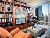 Small Media Room/Library Combination