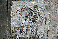 Detail of a mosaic depicting a horse and rider with a dog in the Villa of the Aviary, Carthage, Tunisia, pictured on January 27, 2008, in the afternoon. Carthage was founded in 814 BC by the Phoenicians who fought three Punic Wars against the Romans over this immensely important Mediterranean harbour. The Romans finally conquered the city in 146 BC. Subsequently it was conquered by the Vandals and the Byzantine Empire. Today it is a UNESCO World Heritage. The Roman Villa of the Aviary, with its octagonal garden set in a peristyle courtyard, is known for its fine mosaics depicting birds. Picture by Manuel Cohen.