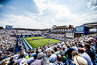 AMBIENCE<br /> <br /> TENNIS - AEGON CHAMPIONSHIPS -  2015 -  QUEENS CLUB - LONDON -  ATP 500- 2015  - ENGLAND - UNITED KINGDOM<br /> <br /> &copy; AMN IMAGES