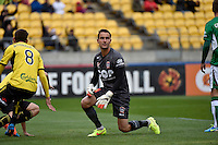 Mark Birighitti in action during the A League - Wellington Phoenix v Newcastle Jets at Westpac Stadium, Wellington, New Zealand on Sunday 26 October 2014. <br /> Photo by Masanori Udagawa. <br /> www.photowellington.photoshelter.com.