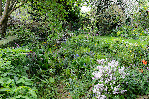 East Lambrook Manor - Somerset (22nd May 2015)