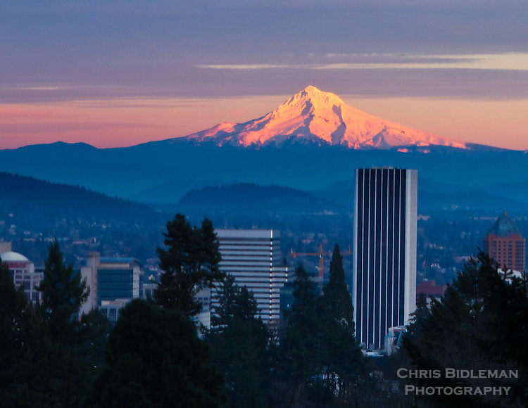 Snow capped Mt Hood is seen at sunset with alpine glow with city of Portland in the foreground.