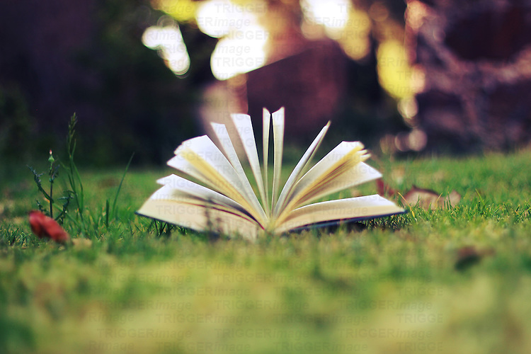 photography of a book lying on the ground with wind moving the pages