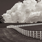 #blackandwhite #monochrome #wisconsin #midwestmemoir #photograph #landscape #B&W #wisconsinphotograph #photography #wisconsinphotographer #black&white  #midwest #fence #clouds #theprintswap