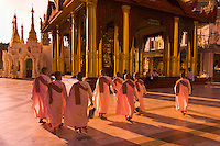 Nuns walking through the Shwedagon Pagoda, Rangoon (Yangon), Burma (Myanmar