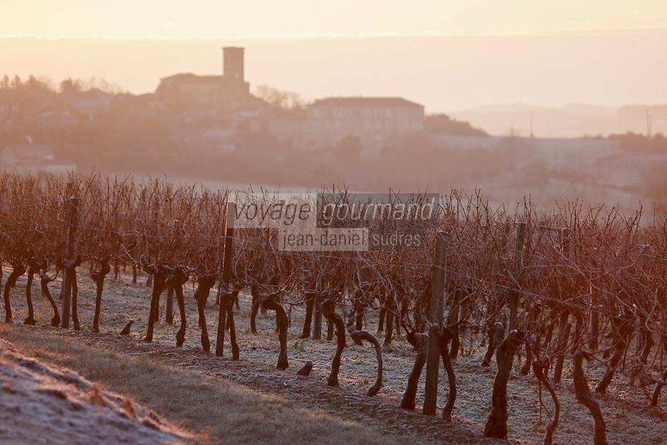 Europe/France/Midi-Pyrénées/32/Gers/Saint-Puy: Le vignoble gascon dans le givre à l'aube et le village