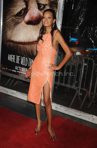 Keisha Whitaker attends the NY film premiere of Where The Wild Things Are at Alice Tully Hall  in New York City. October 13, 2009. Credit: Dennis Van Tine/MediaPunch