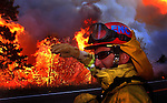 A firefighter turns away from the heat from the oncoming firestorm approaching Highway18, near Lake Arrowhead, Ca..1dogge02.jpg.Feeling the Heat