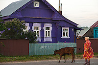 Korovikha, Ivanova Region, Russia, 06/08/2012..A woman in her dressing gown herds cattle through the main street of Korovikha, some 200 miles east of Moscow, in the early morning.
