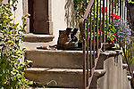 Hiking boots on stone steps outside a front door in Bondo, a Swiss Bregaglia Valley town where many hiking trails start