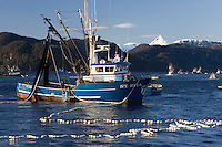 Sitka Herring Fishery