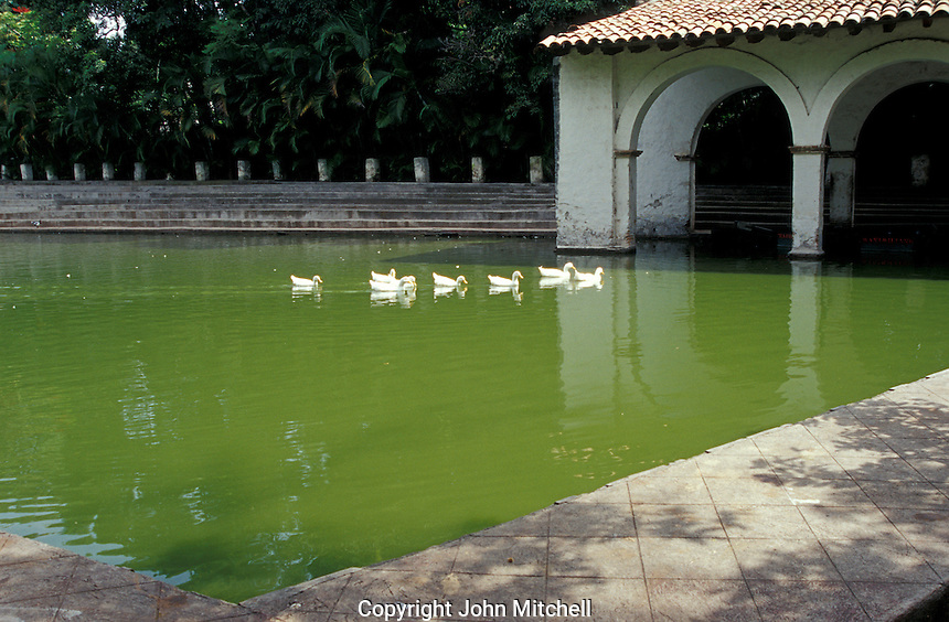 The duck pond in the Jardin Borda, Cuernavaca, Morelos, Mexico. The 18th-century Borda Garden was the summer residence of Emperor Maximilian and Empress Carlota.