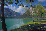 Tree lined path beside lake Plansee near Reutte, Austrian Alps. Austria.